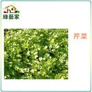 【綠藝家】F03.芹菜 (田尾種)種子5...