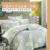 天絲/專櫃級100%.單人床包涼被三件組.葉影微光/伊柔寢飾
