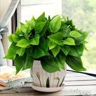 綠蘿仿真綠植套裝仿真花草植物家居客廳裝飾盆栽擺設辦公室擺件 【優樂美】