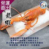 漁季 特選熟凍波士頓龍蝦3隻(350g±10%/隻)【免運直出】