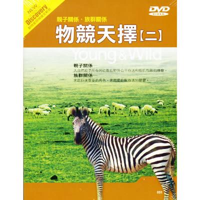 Discovery物競天擇02-親子關係 族群關係 DVD