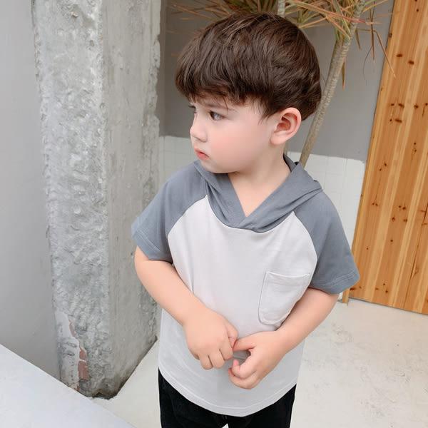 現貨  男寶寶連帽短袖T恤夏季新款插肩袖上衣男童上衣(2-8歲) T恤  短袖