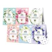 熊寶貝 衣物香氛袋(3包入) 山茶花/玫瑰/茉莉/櫻花/小蒼蘭/藍風鈴 多款可選【小三美日】