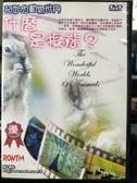 影音專賣店-P09-296-正版DVD-電影【奇妙的動物世界 什麼是擬態】-