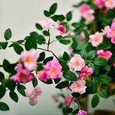 仿真玫瑰花藤薔薇藤蔓假花花藤條空調管道裝飾花藤纏繞塑料花壁掛
