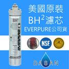 BH2 BH-2 Pentair Everpure濾心 美國原裝公司貨  QL3-BH2濾心 保固30日 附發票