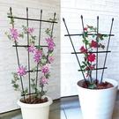 花架 鐵線蓮月季花架攀援類植物攀爬架花盆支架園藝支架柵欄支架