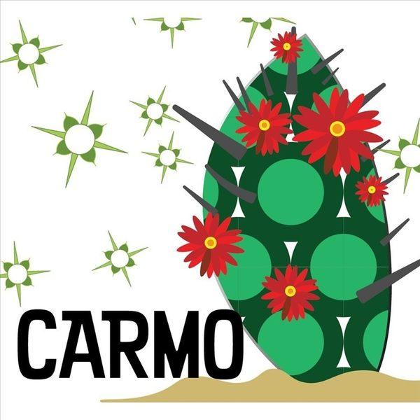 CARMO隨機百合科多肉成株 (1吋)【Z0059】