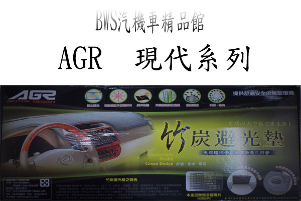 AGR竹炭避光墊 現代 Hyundai ELANTRA COUPE ACCENT XG MATRIX I10 30 SONTA