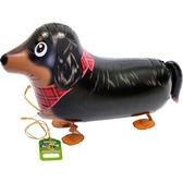 65*30cm散步氣球(不含氣)-臘腸狗