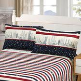 枕套一對裝成人加厚48*74cm單人枕芯套枕皮枕罩枕芯罩枕頭套【全館免運】