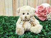 精美絨毛泰迪熊 送客禮 姐妹禮 生日禮 擺飾拍照【皇家結婚百貨】