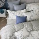 鴻宇 雙人加大床包薄被套組 天絲300織 米堤 台灣製 T20109