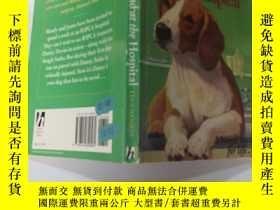 二手書博民逛書店Hound罕見at the Hospital 醫院裏的獵犬Y200392