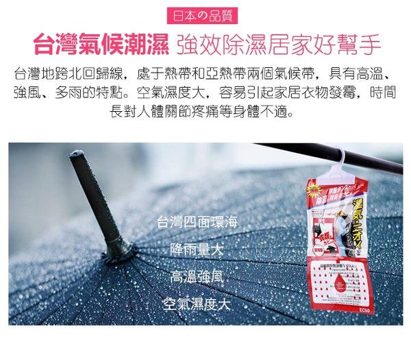 【樂邦】掛式 衣櫃 置物櫃 芳香防潮乾燥 除濕包 除溼包 除溼袋 除濕袋 激乾(150g)