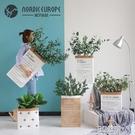 北歐風ins紙袋尤加利葉仿真花擺件家居客廳假花仿真植物花藝擺設 3C優購