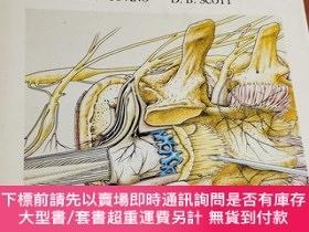 二手書博民逛書店handbook罕見of epidural anaesthesia and analgesia[d.b.scott