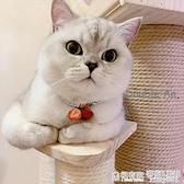 可愛草莓寵物項圈 英短布偶泰迪比熊約克夏項圈寵物鈴鐺寵物用品 全館鉅惠