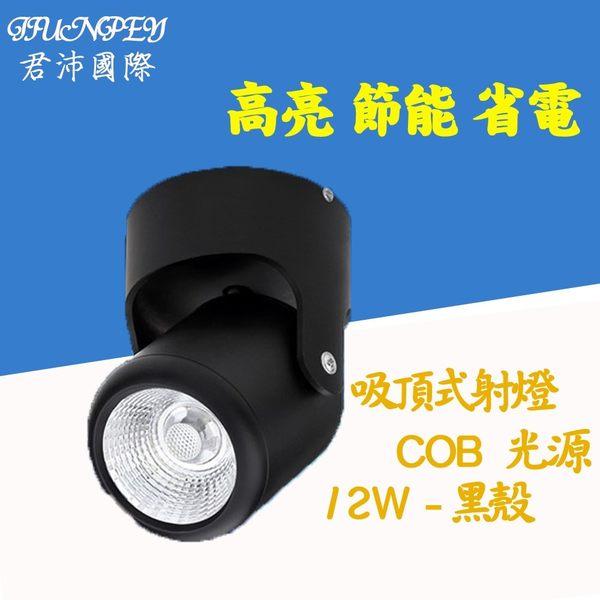 led吸頂燈價格 安裝於天花板 適用 COB光源 12W/12瓦 明裝3001 免運費 廠家直送 (黑殼)
