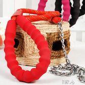 寵物狗鍊子金毛牽引繩帶 E家人