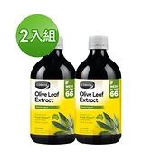 Comvita康維他 橄欖葉精華萃取液(原味)500ml - 2入組