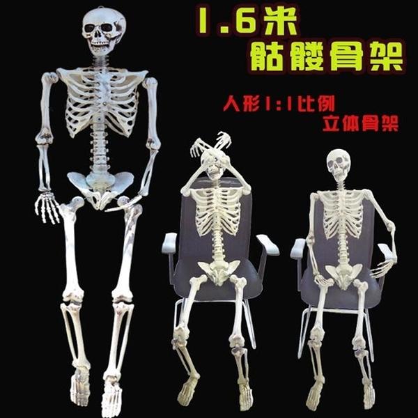 萬聖節 陰屍路 全身 骷髏頭 變形骷髏 造型骷顱頭 骷顱擺設 人體骷顱頭 人體模型 鬼屋【塔克】