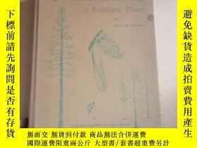 二手書博民逛書店The罕見Genetics and Breeding of Southern Pines(精裝)Y17778