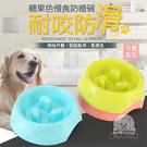 糖果色慢食碗 飼料碗 寵物碗 寵物飼料碗 寵物餵食 寵物餐具 狗碗 貓碗 餵食 寵物 飯碗 防噎 減肥