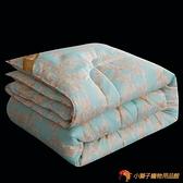 四季通用被子空調被輕薄款絲棉被芯冬被雙人冬季加厚保暖【小獅子】