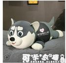 哈士奇公仔布娃娃可愛二哈毛絨玩具狗狗熊女孩睡覺抱枕長條枕玩偶 快速出貨