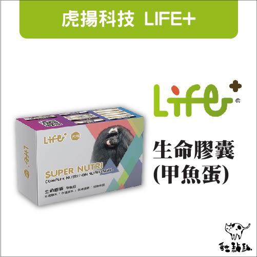 虎揚科技Life+〔生命膠囊,鱉丹 / 爆毛丹,60顆〕