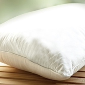 ROMSEY 五星級鉑品鵝毛枕 72×48cm-箱購