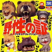 全套6款【日本正版】嘶吼的野生動物 P1 扭蛋 轉蛋 第1彈 野性之證 TAKARA TOMY - 820441
