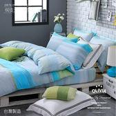 OLIVIA【 晴語】 標準雙人床包冬夏兩用被套四件組  60支奧地利蘭精萊賽爾天絲TENCEL   台灣製