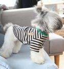 寵物服 小熊繡花條紋三色款寵物衣服秋裝新款狗衣服法斗泰迪比熊 快速出貨