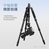 輕裝時代Q278三腳架單眼便攜微單相機手機攝影戶外直播三角架支架AQ 有緣生活館