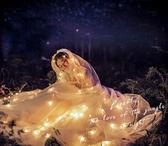 新款婚紗夜景拍照道具 影樓外景攝影道具裝飾