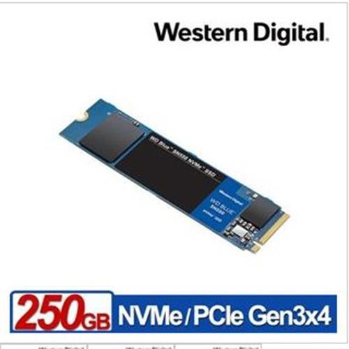WD 威騰 藍標 SN550 250GB SSD PCIe NVMe 固態硬碟