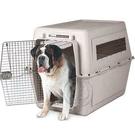 【 培菓平價寵物網】 Petmate《寶萊》Vari Kennel特大寵物運輸籠-700P