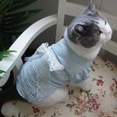 網紅寵物狗狗貓咪衣服蕾絲公主裙透氣春夏薄款英短泰迪原創【小獅子】