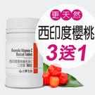 【大醫生技】西印度櫻桃維他命C口含錠90...