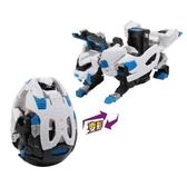 Carbot衝鋒戰士 恐龍奇兵 獵風美洲虎 TOYeGO 玩具e哥