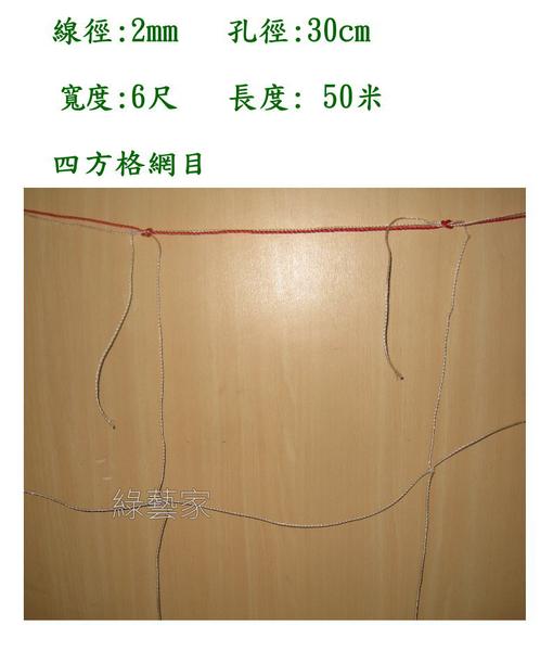 【綠藝家】絲瓜網(四方網目)攀藤網.爬藤網