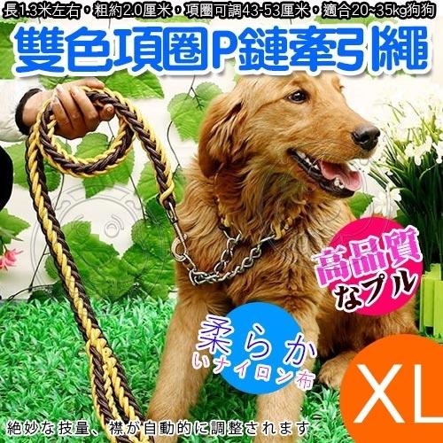 【培菓幸福寵物專營店】dyy》寵物升級版雙色項圈P鏈牽引繩-XL號粗2.5cm
