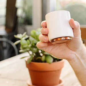 FELLOW MONTY 雙層陶瓷咖啡杯– 4.5oz告耳杯拉花杯霧面白