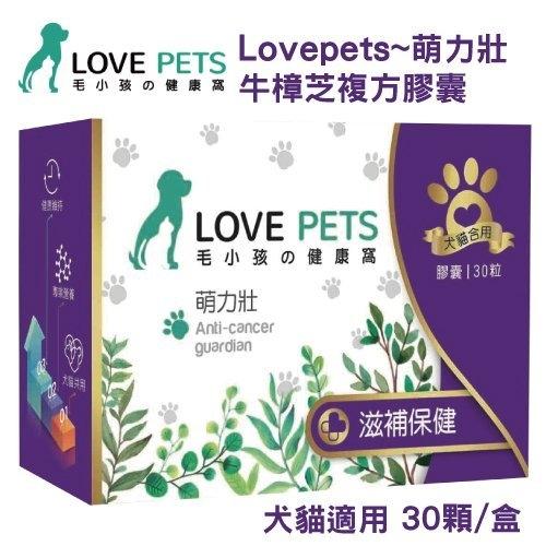 『寵喵樂旗艦店』LOVE PETS《萌力壯 牛樟芝複方膠囊》犬貓適用 30顆/盒 牛樟芝菌絲體/鯊魚軟骨粉