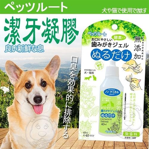 【培菓平價寵物網】Petz Route沛滋露》65402犬貓用酵素潔牙凝膠-40ml