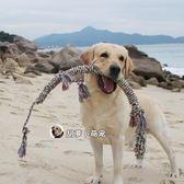 長1米 蜥蜴棉繩玩具大狗互動拉布拉多金毛薩摩中大型狗狗耐咬玩具【開學季任性88折】