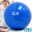 2磅軟式沙球.重力球重量藥球瑜珈球韻律球抗力球健身球訓練球復健球啞鈴加重球沙包沙袋彈力球