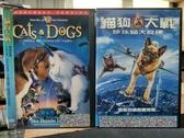 挖寶二手片-D62-正版DVD-電影【貓狗大戰1+2/系列2部合售】-(直購價)